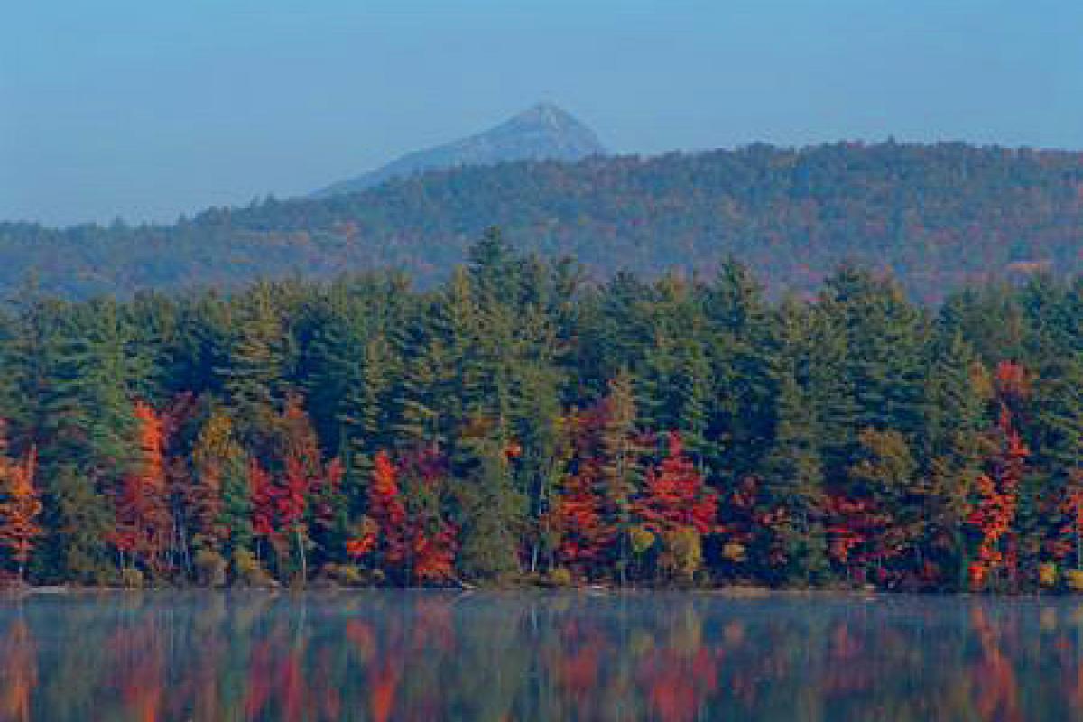 Autumn trees across a lake